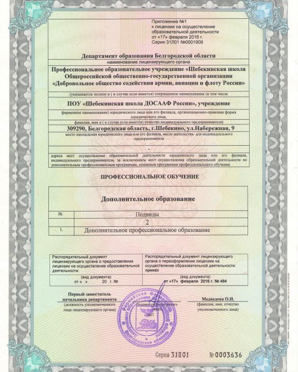 Лицензия. Приложение