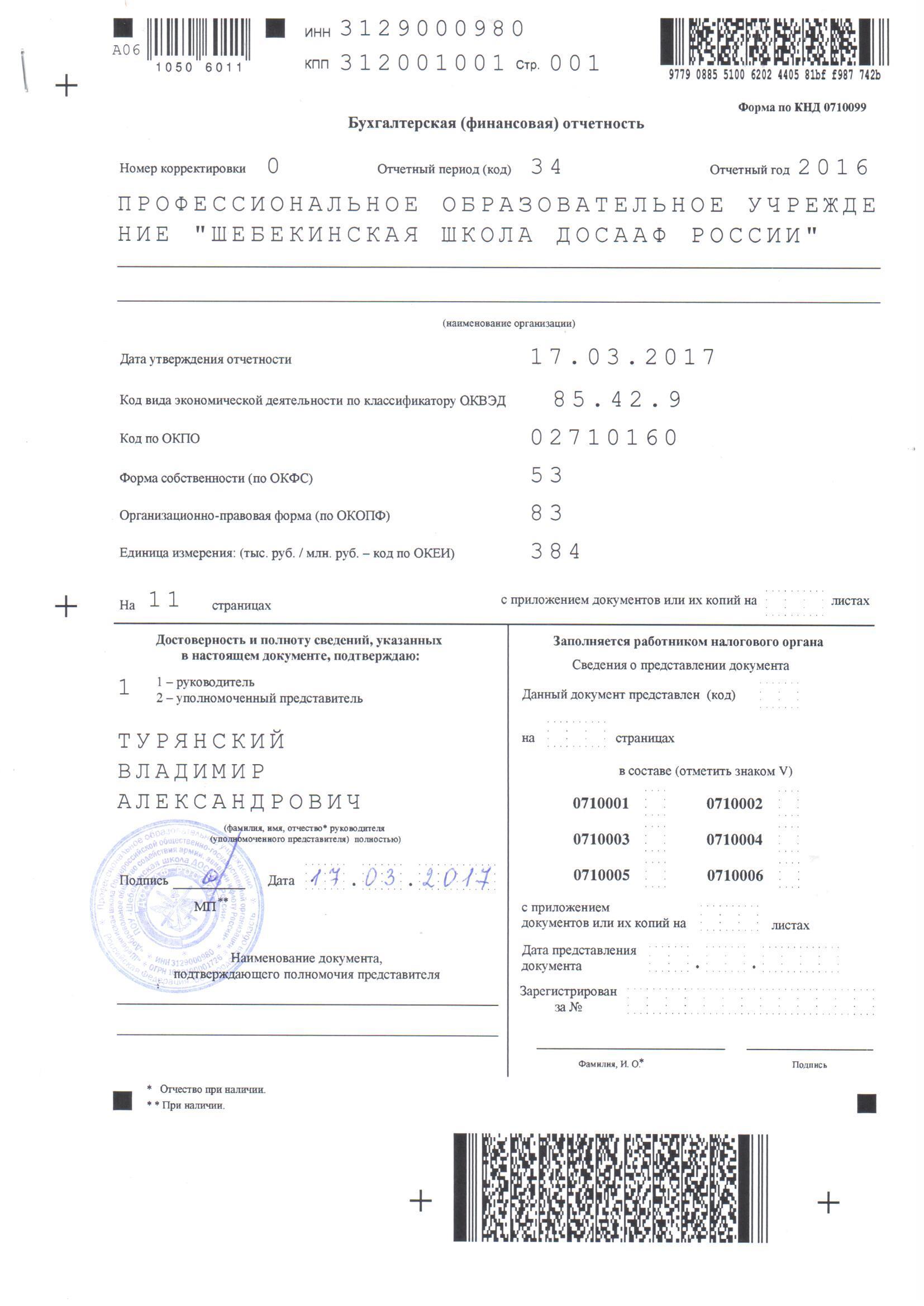 Бухгалтерская (финансовая) отчетность - 2016 год0001