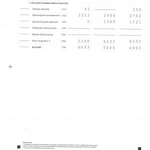 Бухгалтерская (финансовая) отчетность - 2016 год0005